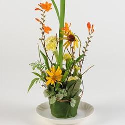 利用一次性纸杯DIY制作漂亮的插花装饰盆景