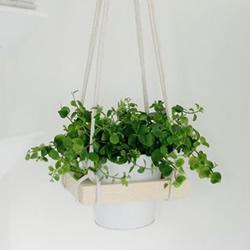 简约空中木花架制作教程 自制悬空花架的