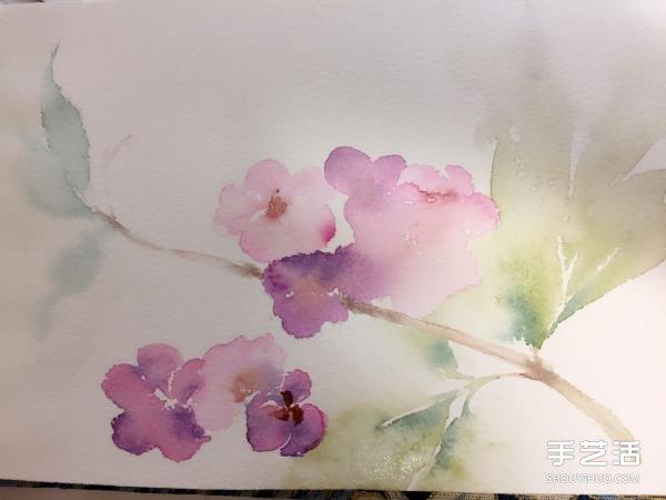 水彩画画花的步骤图片 花朵水彩画的技法教程图片