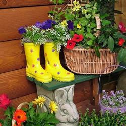 废旧鞋子制作花盆的方法 旧鞋子DIY花盆教程