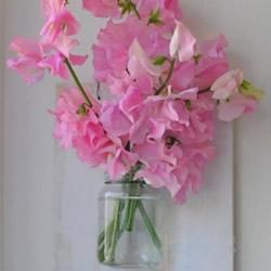 森系墙壁挂花DIY图解 墙壁鲜花挂件装饰制