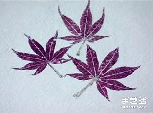 树叶拓印画怎么做 自制树叶拓印画步骤图片