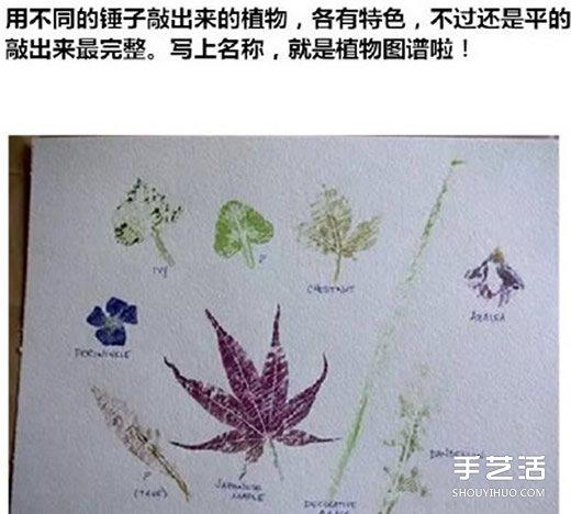 树叶拓印画怎么做 自制树叶拓印画步骤图片 - www.shouyihuo.com