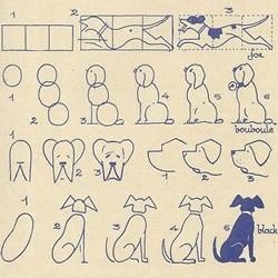 不同形态动物的简笔画画法图片 简单容易学!