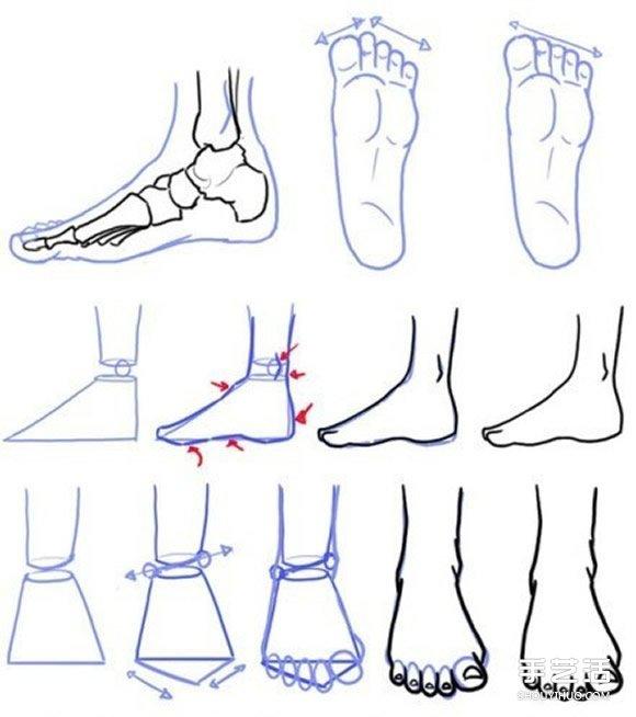 不同形态脚的画法图解 足部素描画法步骤图