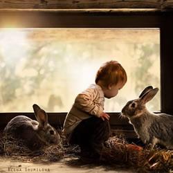 可爱小男孩跟动物们的温馨摄影作品欣赏