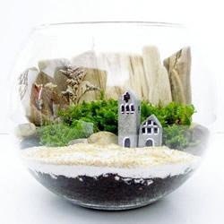 如何随手利用家里现有的小东西做植物盆景
