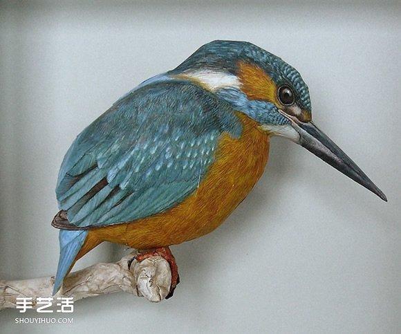 荷兰纸艺大师 Johan Scherft 在纸手工艺领域中可算得上神奇,14 岁就开始研究纸鸟模型,着色也只用彩色铅笔来绘制羽毛。别看仅仅是一只小小的鸟,结合了 3D 概念、素描、绘画和记录自然等不同层次的精细工作。