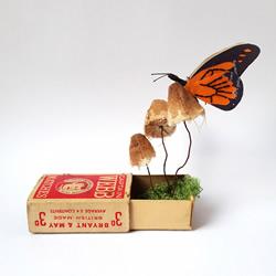 利用回收纸与天然染料 创作惊艳的自然系纸雕