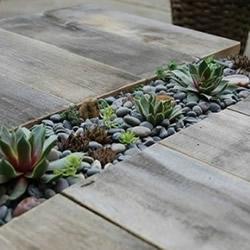 自制木板多肉花架DIY教程 还可以当桌椅用