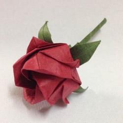 超详细川崎玫瑰的折法图解 包括花朵和花托