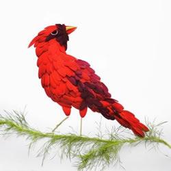 花瓣拼贴画作品图片 拼出充满异国情调的鸟类