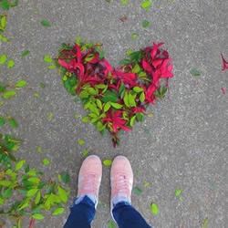 扫地也能很诗意 这么DIY让秋天落叶更浪漫!