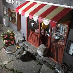 街头的迷你小店模型 让人心底有种暖暖的感觉