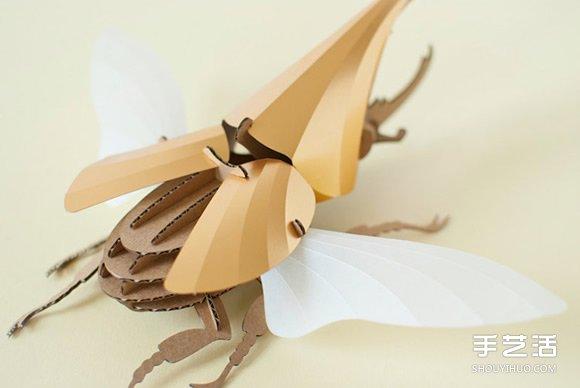 3D昆虫纸雕 通过拼图让你找回手作的乐趣 -  www.shouyihuo.com