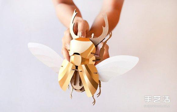 3D昆蟲紙雕 通過拼圖讓你找回手作的樂趣