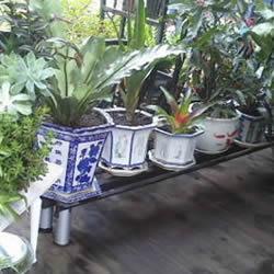 铁架子废物利用 DIY手工制作搁置花盆的架子
