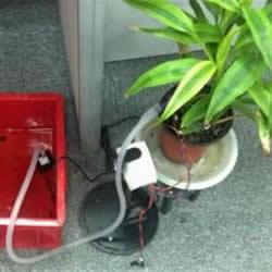 自动浇花系统原理图 自动浇花器原理小发明