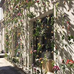 2000朵鲜花编织成帘幕 米兰设计室的春季外墙
