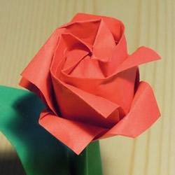 川崎玫瑰花折法教程 川崎玫瑰改良版折纸图解