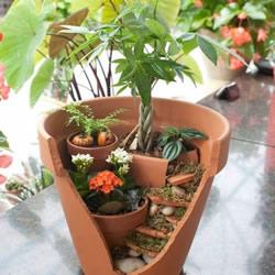 破损花盆做盆景的方法 破花盆废物利用DIY盆景