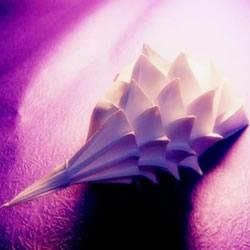 立体海螺的折法图解 详细折纸海螺的过程步骤
