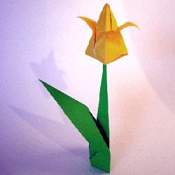 手工折纸郁金香花教程 怎么简单折郁金香步骤