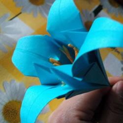 百合花怎么折图解教程 折纸百合的过程步骤
