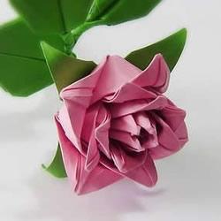 折卷心玫瑰的方法图解 详细卷心玫瑰折纸过程