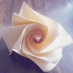 卷纸玫瑰怎么折图解 简易版纸玫瑰的折法过程