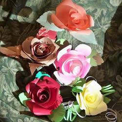 卡纸玫瑰花的做法图解 简单彩色纸玫瑰制作