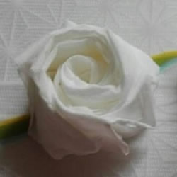 一张餐巾纸折玫瑰花 只需几分钟就可以搞定