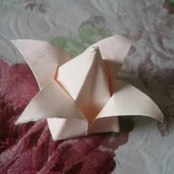 百合花的折法简单易学 怎么折百合花的图片