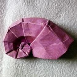 看着有点像羊角!手工蜗牛壳折纸方法图解