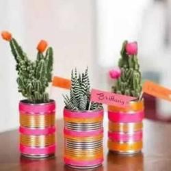 自制小盆栽的方法图解 简单铁罐子废物利用