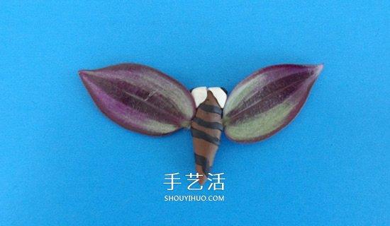 用树叶做翅膀 简单省力的粘土蝴蝶手工制作