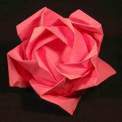 详细玫瑰花的折纸教程 简单五瓣玫瑰花的折法