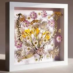 用押花留住春天的美!干花做法及押花装饰画DIY