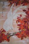 獨特的民間藝術——鳳陽鳳畫