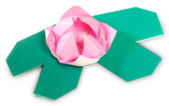 荷花及荷叶折纸方法 -  www.shouyihuo.com
