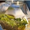 手工DIY苔藓盆景的教程