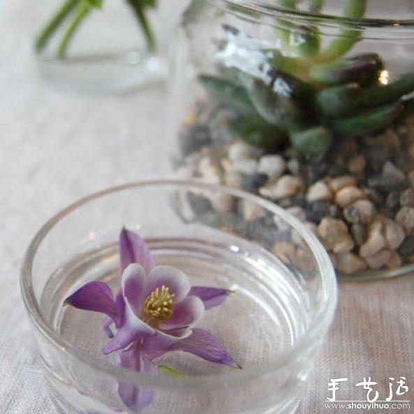 玻璃瓶作為容器的插花教程
