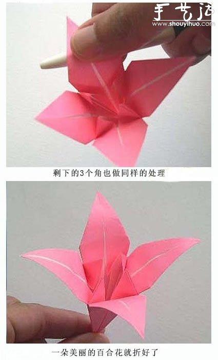 花朵设计图_漂亮的百合花折纸教程_手艺活网