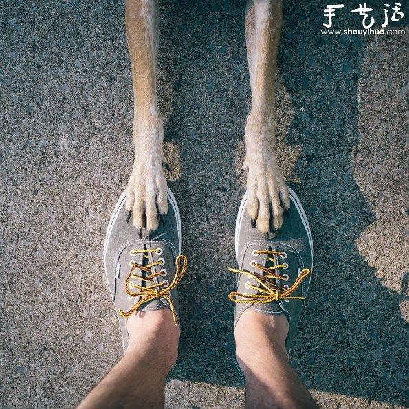 動物攝影:狗狗的有趣絕活兒