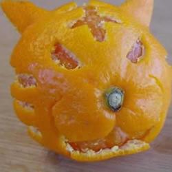 好玩的橘子皮创意DIY
