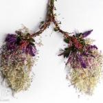 花草DIY的各种人体器官