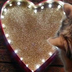 巧克力盒子DIY浪漫心形灯饰的教程