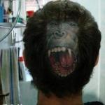 超犀利的头部纹身:愤怒咆哮大猩猩