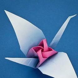 折纸玫瑰千纸鹤的教程