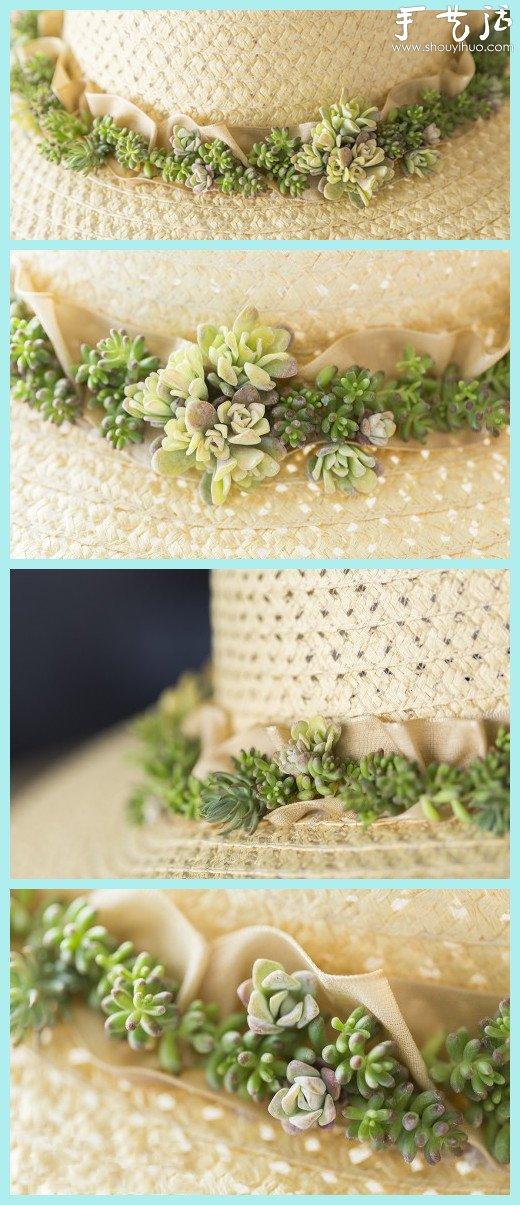 多肉植物DIY製作草帽